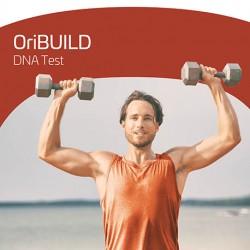 OriFIT - Build