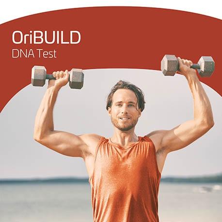 OriBUILD DNA Test