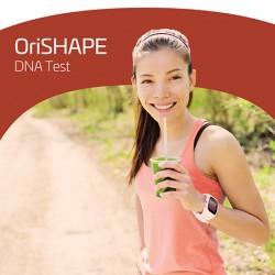 OriFIT - Shape